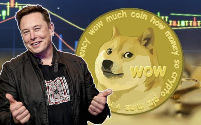 Is Dogecoin a Good Investment? Facts About Dogecoin